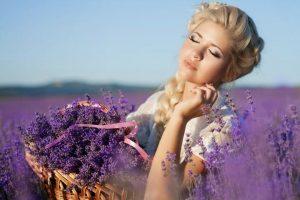 Tinh dầu lavender chữa cháy nắng hiệu quả