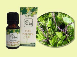 5 tác dụng thần kỳ của tinh dầu hương nhu