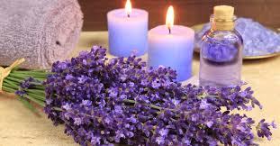 Trẻ hóa làn da với tinh dầu lavender