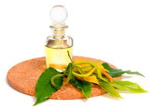 Công dụng của tinh dầu cao cấp ngọc lan tây