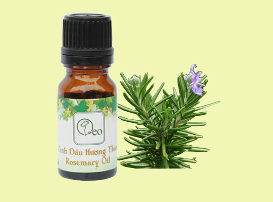 Một số tác dụng của tinh dầu tự nhiên hương thảo nguyên chất với sức khỏe