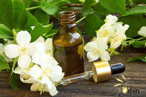 tinh dầu thiên nhiên hoa nhài với sức khỏe